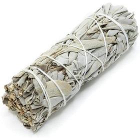 Salvia Blanca Californiana Rollo 10cm -cosecha Sostenible-