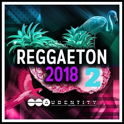 Sample Pack Reggaeton