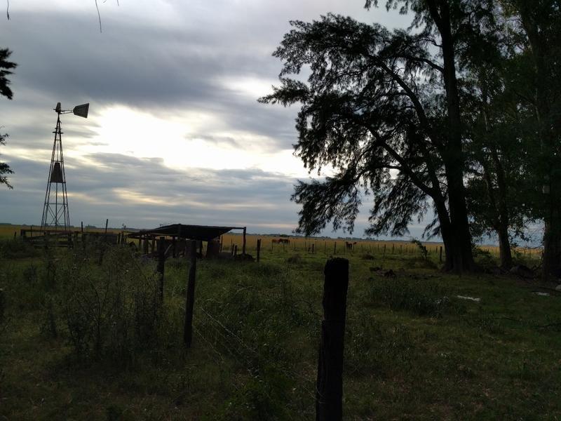 san eladio, chacra  en venta 12 hectáreas, monte , molino, casa a reciclar