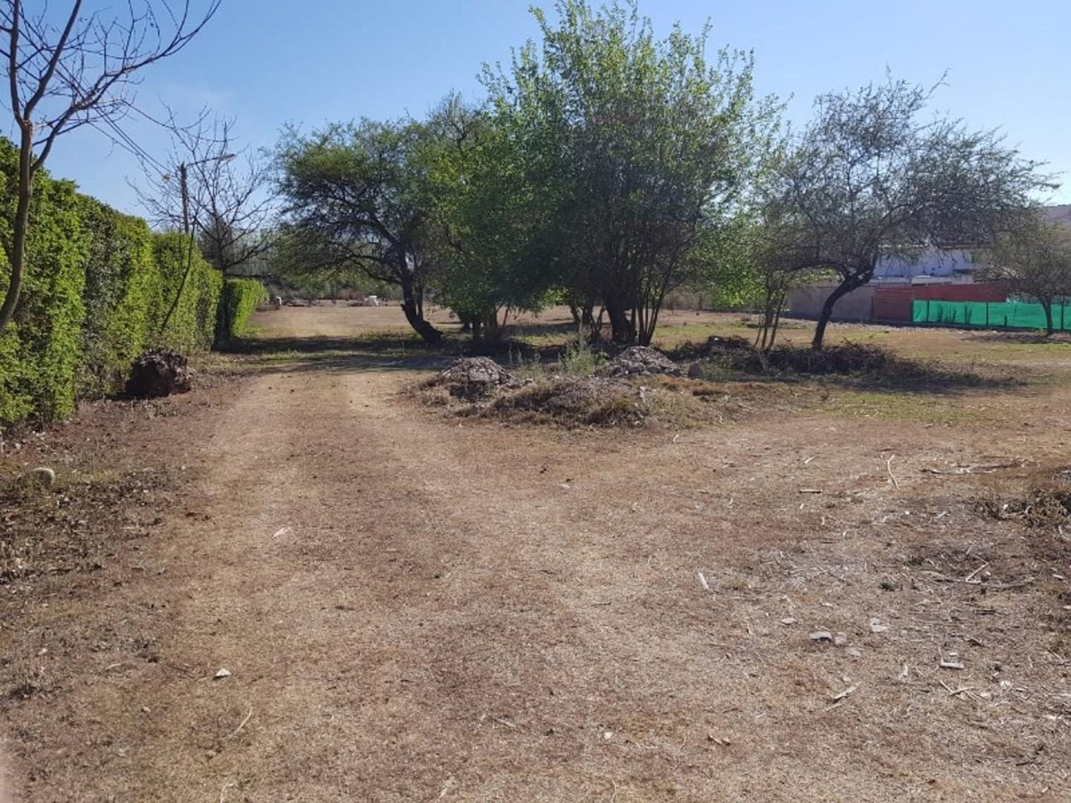 san lorenzo terreno