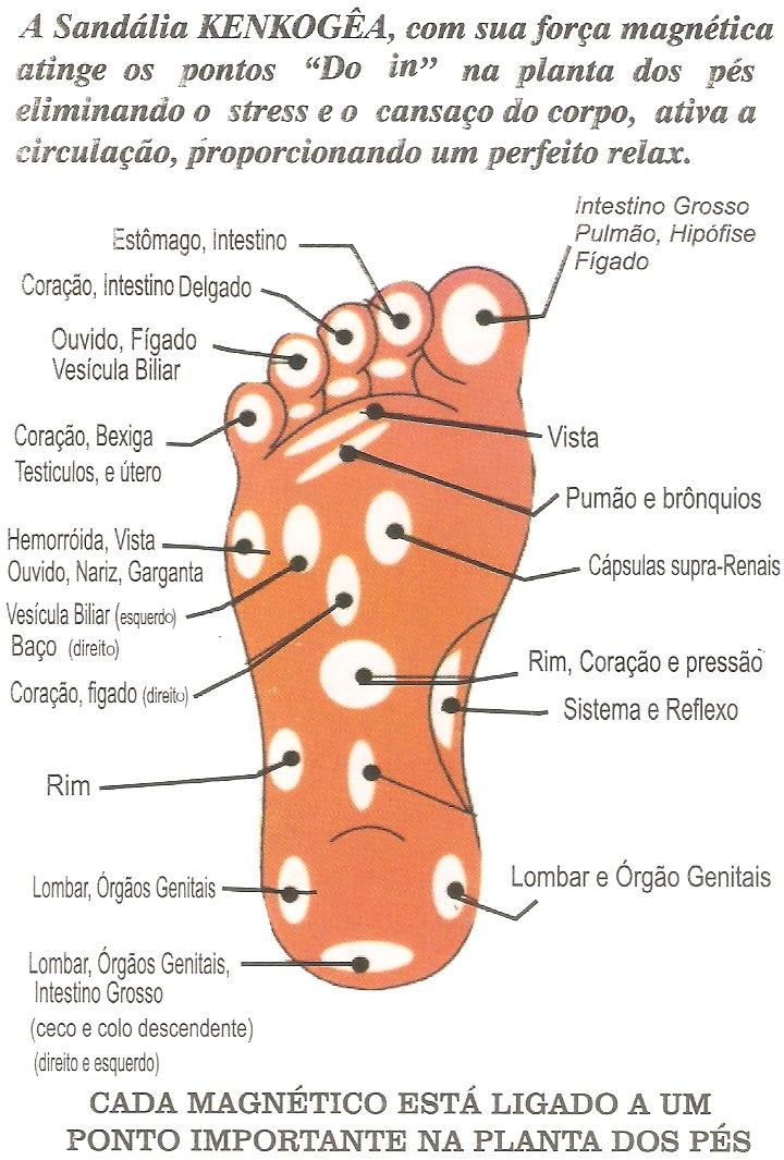 1c1220561 Carregando zoom... chinelo sandália magnético feminino em eva topázio  kenkogêa