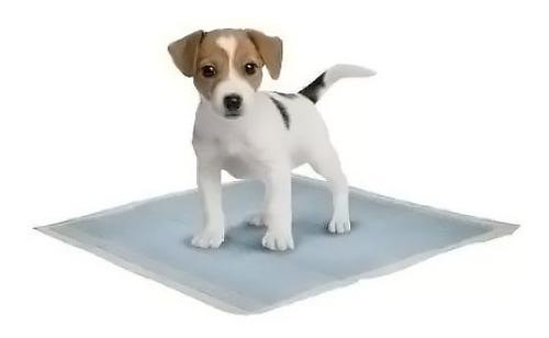 sanitaria mascotas alfombra