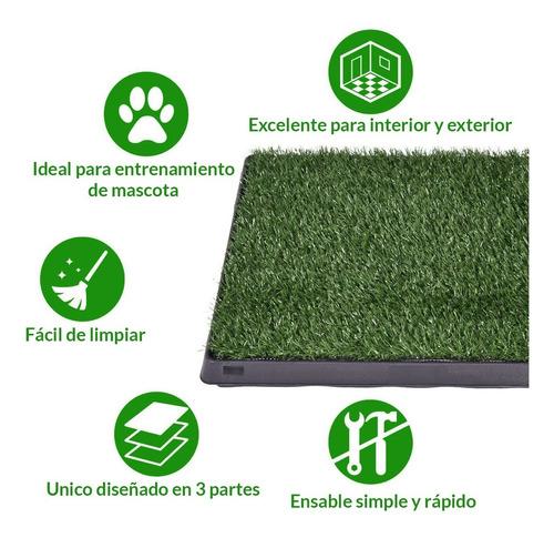 sanitaria perro alfombra
