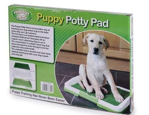 sanitario perros baño