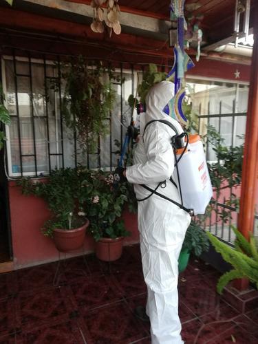 sanitizacion con amonio cuaternario