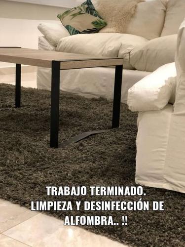 sanitización desinf limpieza de alfombras sillas y sillones