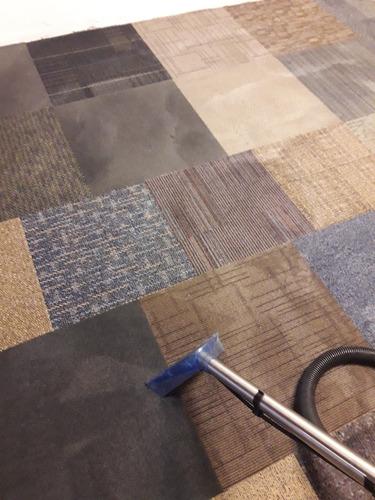 sanitización desinfección limpieza alfombras lavado sillones