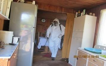 sanitizacion , fumigacion  (casas y autos)