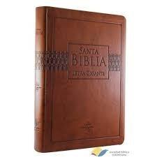 santa biblia reina valera 1960 letra grande concordancia