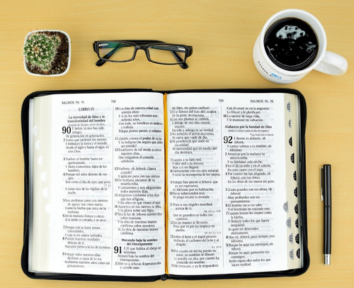 santa biblia reina valera 1960 negra letra grande (gigante)