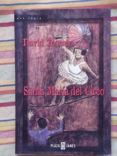 santa maría del circo david toscana dedicado