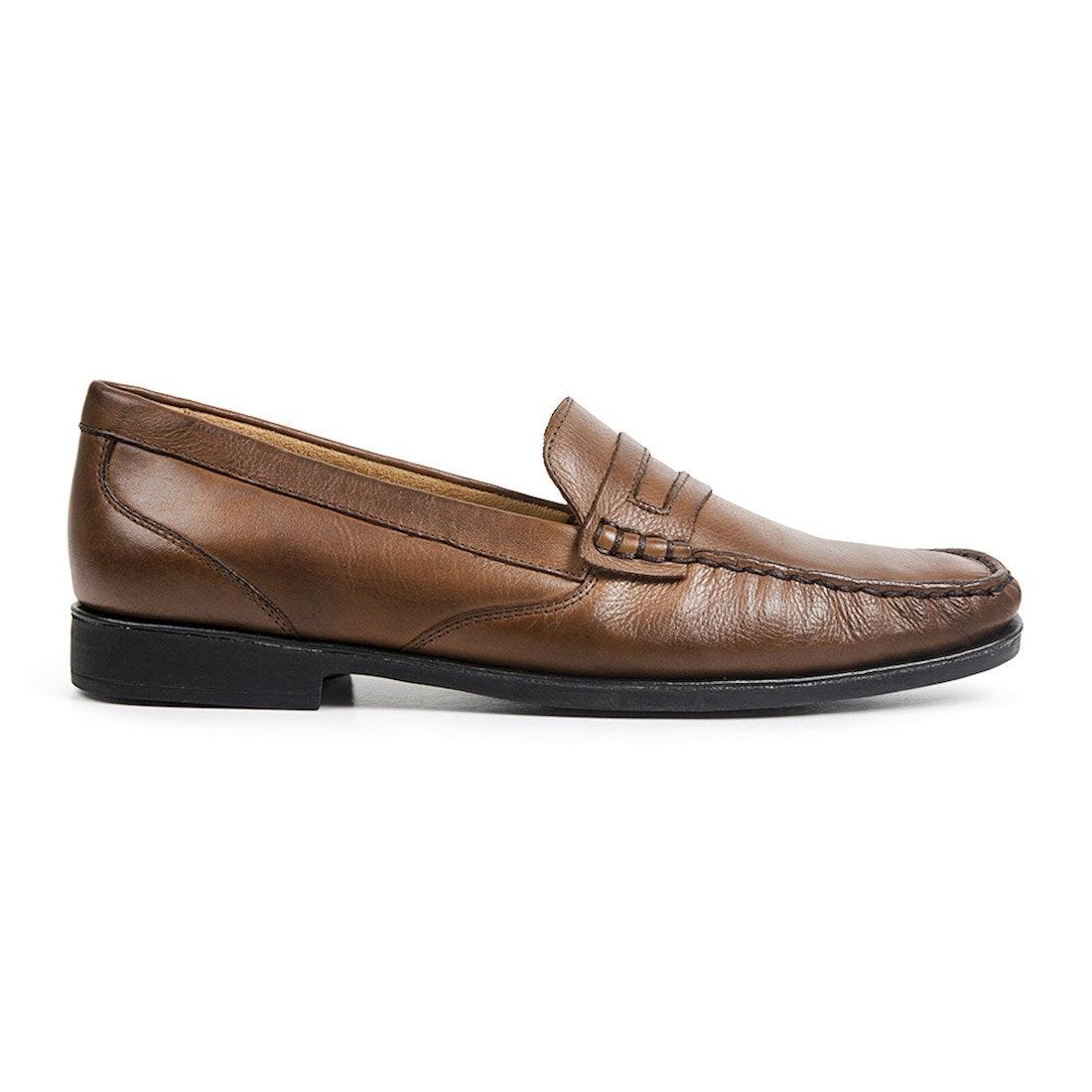 3ea8be204 sapato masculino mocassim sandro moscoloni point marrom. Carregando zoom.