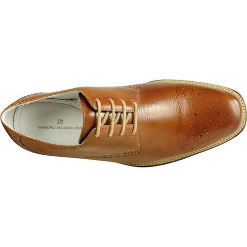 sapato masculino sandro moscoloni