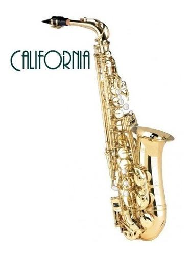 saxo alto dorado california  estuche rigido