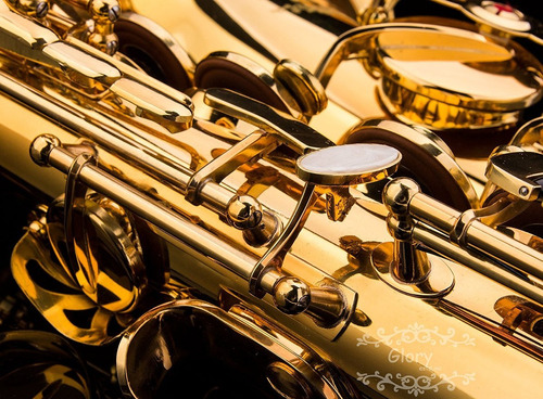 saxofon alto con caja y accesorios
