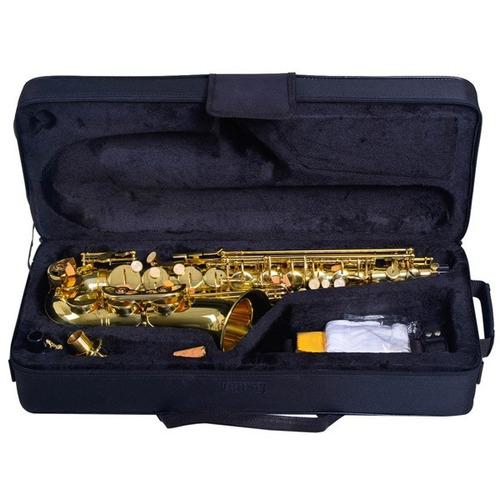 saxofón alto con caja y accesorios