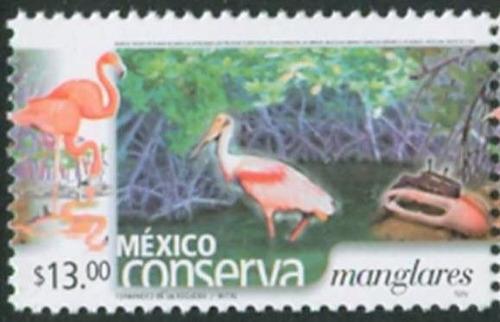 sc 2432 (s3) año 2004 conserva manglares 13p perf 13