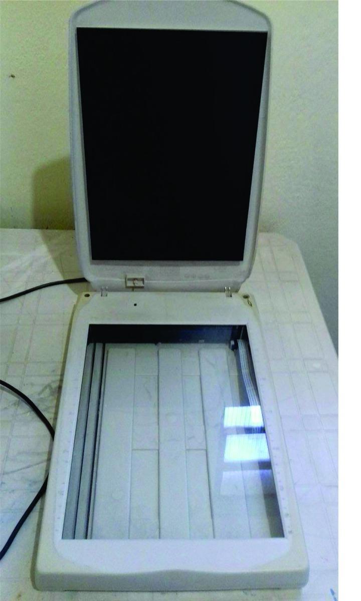 MUSTEK 1200 USB PLUS WINDOWS 10 DRIVER DOWNLOAD