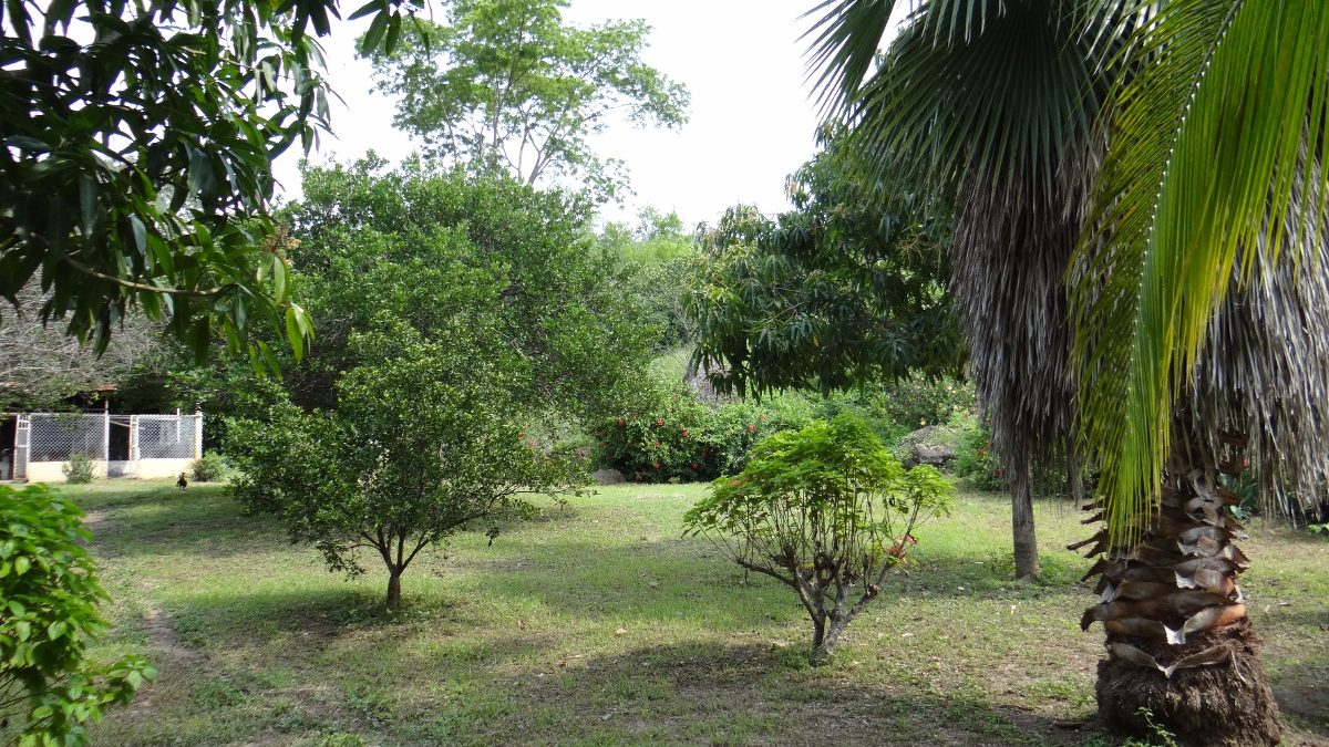 se alquila  finca recreativa tocaima
