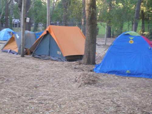 se alquila proveeduria y fast food- camping afrika v. gesell