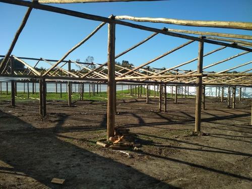 se construye galpones para invernaculos, hornos de ladrillos