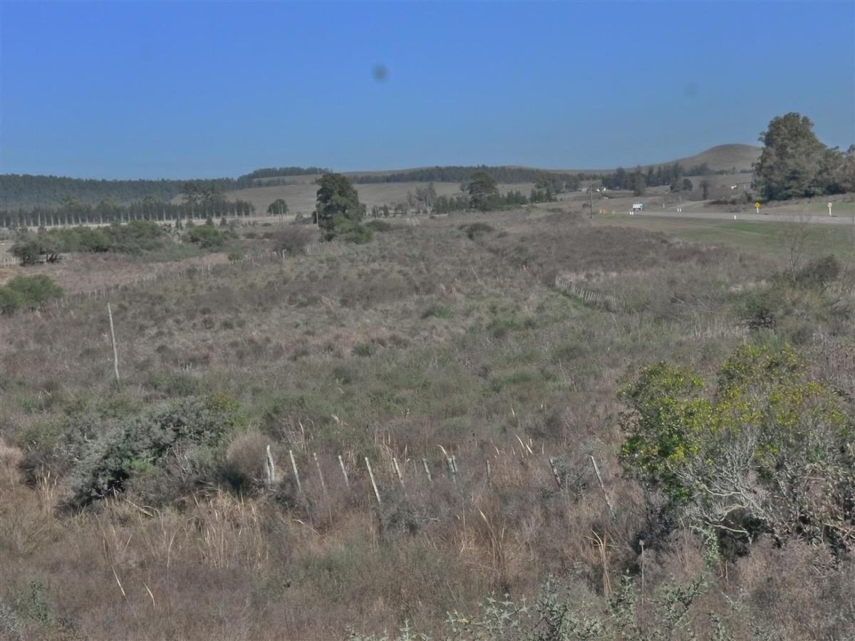se vende chacra en minas   el talar  ruta 8 km 136