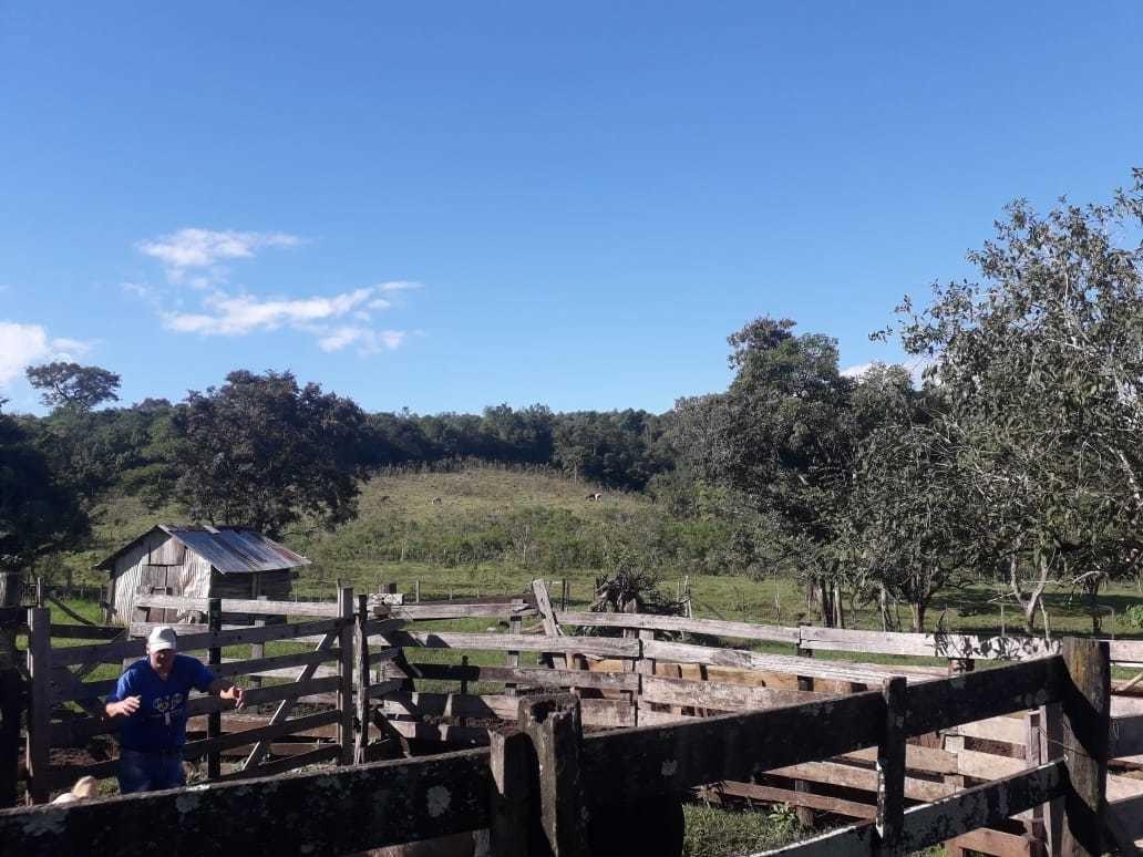 se vende, chacra ganadera 37 hectáreas- san javier, misiones
