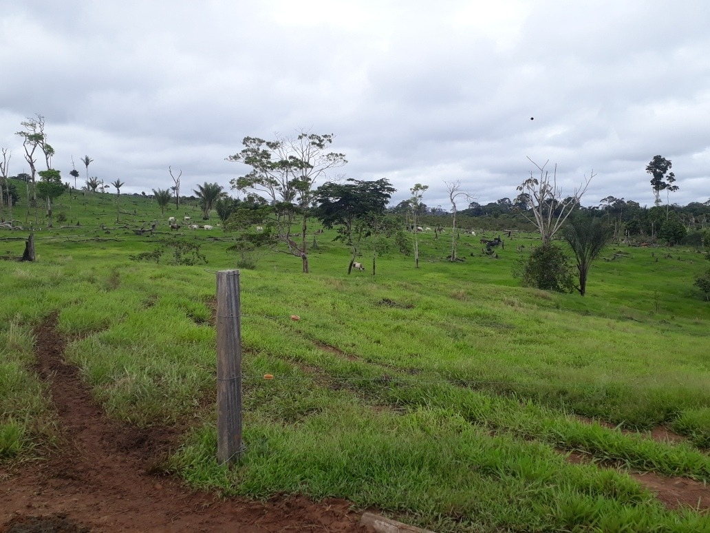 se vende finca de 100 hectáreas