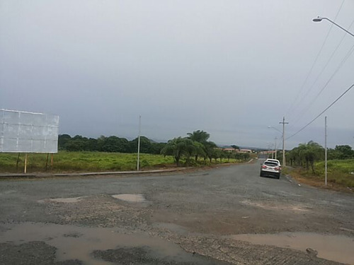 se vende finca de 103 hectáreas en penonome