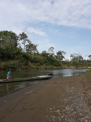 se vende finca de 54 hectareas en rio chico, darien