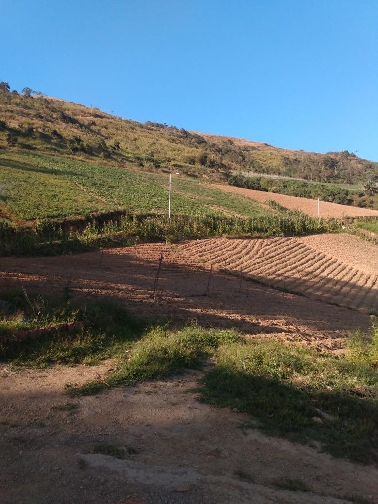 se vende finca de 6 hectáreas de terreno para la siembra de