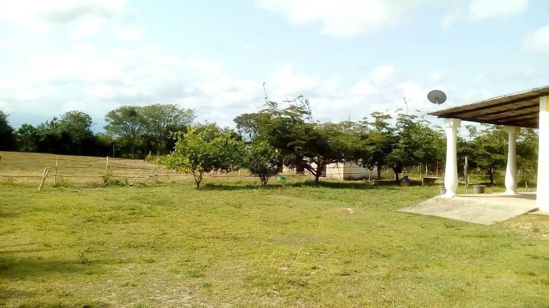 se vende granja en yaracuy # 203176
