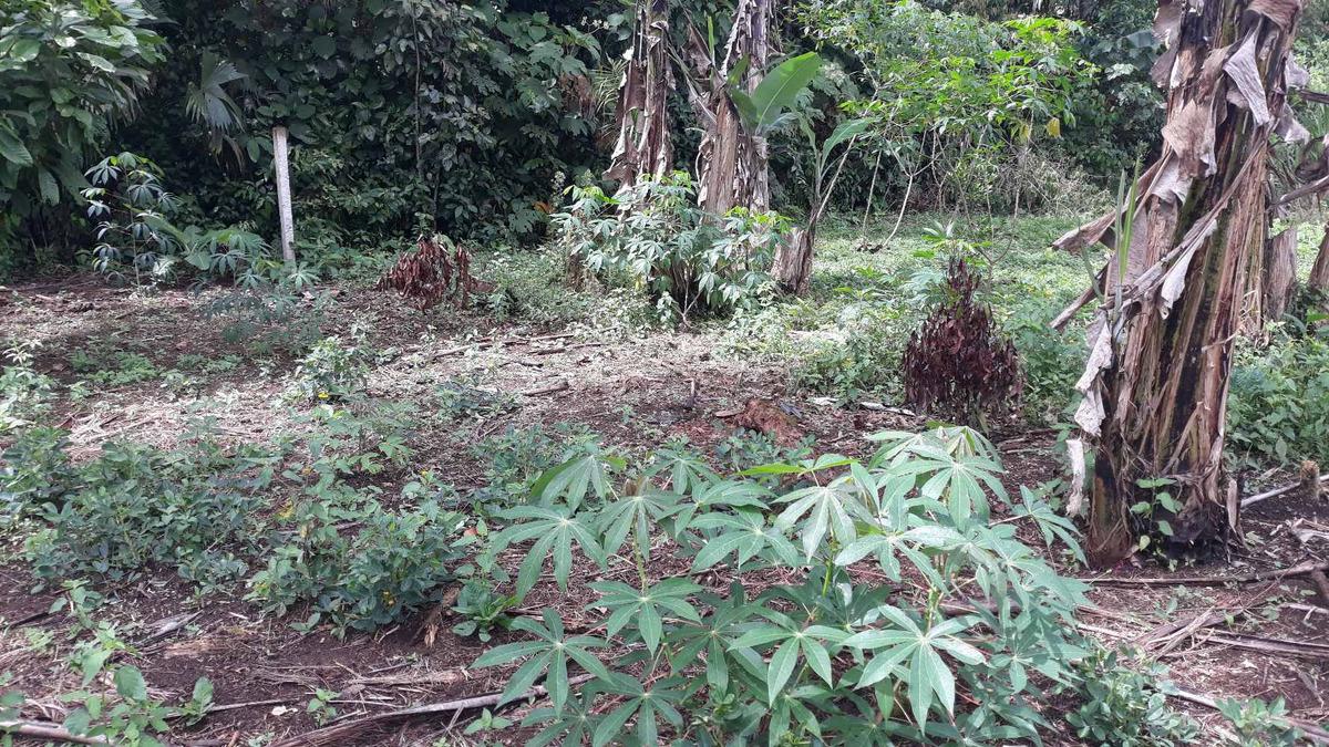 se vende hermoso terreno de 1404 m2 en sevilla don bosco