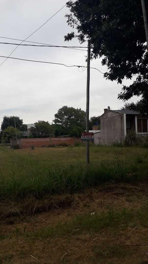 se vende hermoso terreno en andino dentro de el pueblo
