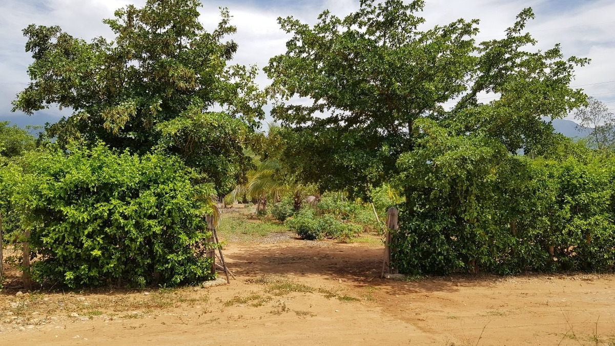 se vende lote rioseco 2.000 m2 km14 via valledupar - rioseco