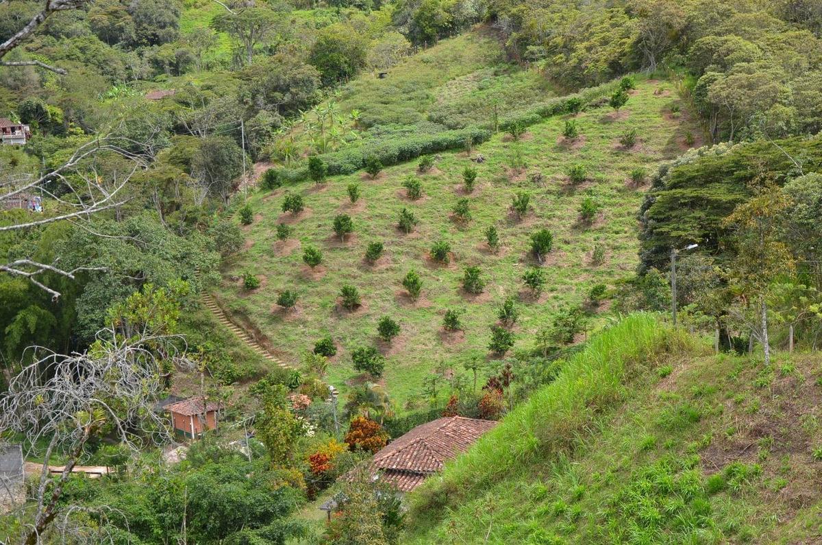 se vende lote rural en barbosa - antioquia