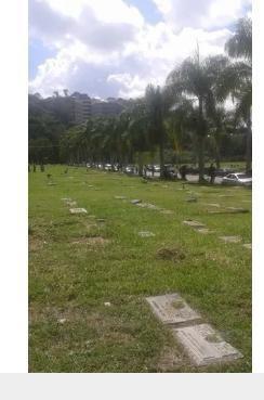 se vende parcela en el cementerio del este