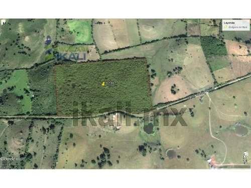 se vende rancho en tamiahua a bordo de carretera por tampache,16 hectáreas en montadas, se encuentra ubicado en la carretera naranjos - tamiahua a 1 km del pueblo de tampache. posee una forma rectang