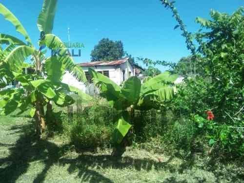 se vende terreno 420 m² col. benito juárez en tuxpan veracruz, se vende excelente terreno en una buena ubicación, con árboles frutales, 14 metros de frente y 30 metros de fondo, con todos los servici
