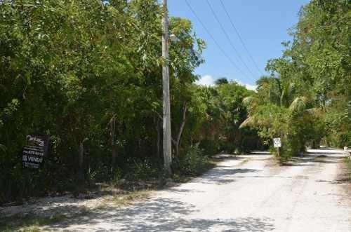 se vende terreno 7,000 m2 en playa del secreto playa del carmen, quintana roo p1621