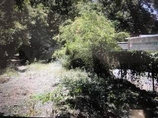 se vende terreno campestre en lamadrid, coahuila