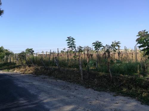 se vende terreno comercial de 32,117 m2 en bugada, chiriqui
