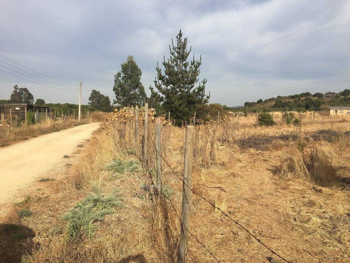 se vende terreno condominio valle del estero 5000mt2 con electricidad y agua ( pozo ) $ 42.000.000