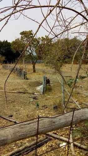 se vende terreno de 10000 metros en jiutepec morelos