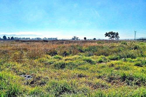 se vende terreno de 22,000 m en san mateo atenco