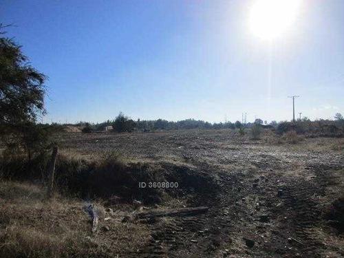 se vende terreno de 28 ha. ubicado a 50 mt de ruta 5 y a 300 mt de la ruta del itata. terreno ubicado en área urbana.