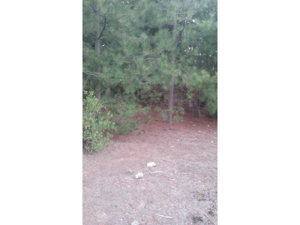 se vende terreno detras de gaston hamel nieto los pinos
