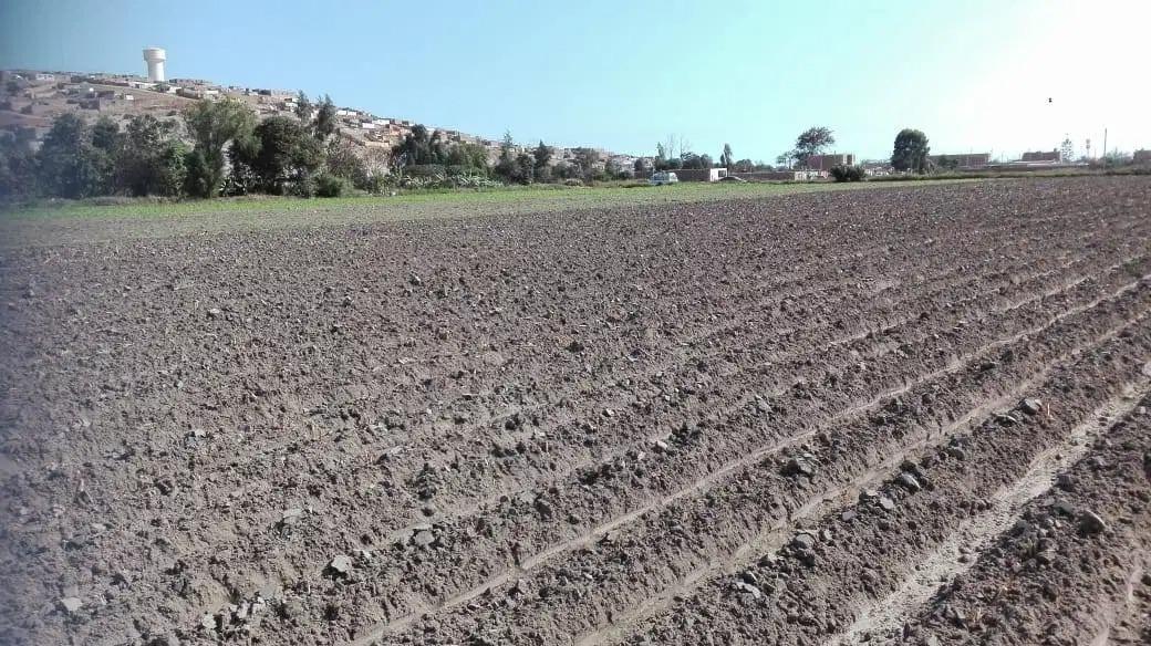 se vende terreno en campiña de huacho