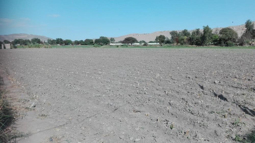 se vende terreno en campiña de la ciudad de huacho