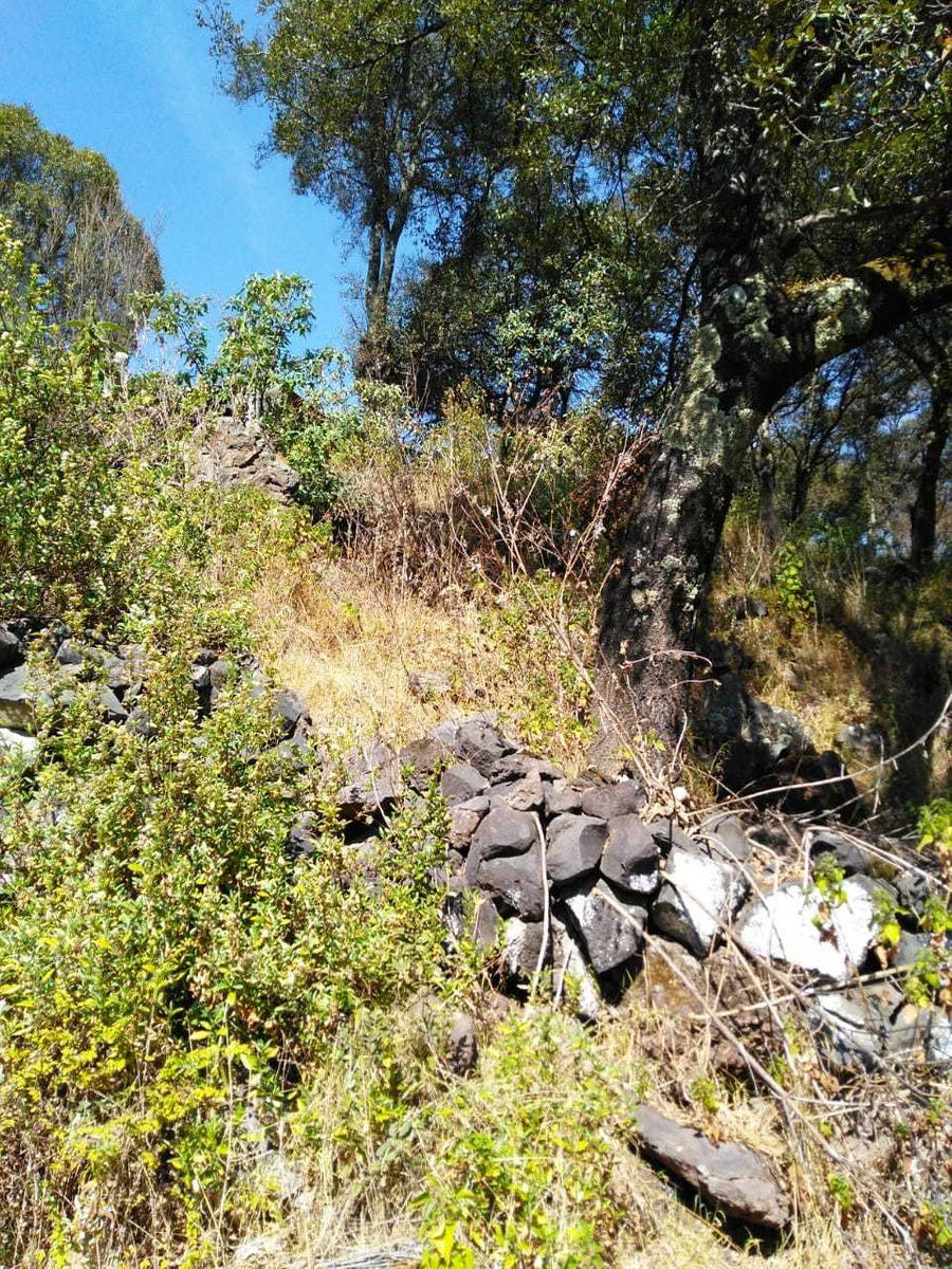 se vende terreno en el pedregalito (ocoyoacac)
